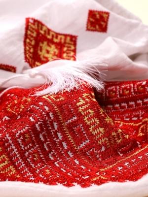Bluză de damă stilizată inspirată de modele tradiționale românești broderie BANAT Rosu FLORII